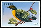 Cl: African Pitta (Pitta angolensis) new (1996)
