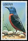Cl: Rufous-tailed Rock-Thrush (Monticola saxatilis) new (1996)