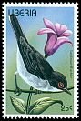 Cl: Sardinian Warbler (Sylvia melanocephala)(Out of range)  new (1996)