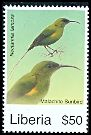 Cl: Malachite Sunbird (Nectarinia famosa)(Out of range)  new (2008)  [4/48]