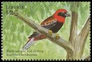 Cl: Black-winged Bishop (Euplectes hordeaceus) new (2001)  [2/10]