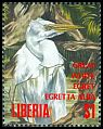Cl: Intermediate Egret (Egretta intermedia) new (1994)