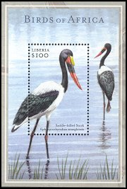 Cl: Saddle-billed Stork (Ephippiorhynchus senegalensis) new (2001)  [2/12]