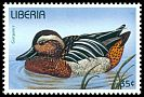 Cl: Garganey (Anas querquedula) new (1996)