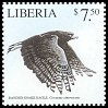 Cl: Banded Snake-Eagle (Circaetus cinerascens)(Out of range and no other stamp)  new (2001)