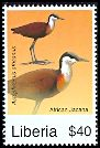 Cl: African Jacana (Actophilornis africanus)(Repeat for this country)  new (2008)  [4/48]