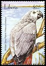 Cl: Grey Parrot (Psittacus erithacus)(Repeat for this country)  new (2001)  [2/25]
