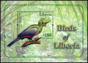 Cl: Guinea Turaco (Tauraco persa)(Repeat for this country) (I do not have this stamp)  new (2011)  [7/14]