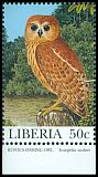 Cl: Rufous Fishing-Owl (Scotopelia ussheri) new (1997)