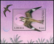 Cl: Antillean Nighthawk (Chordeiles gundlachii)(Out of range)  new (2001)