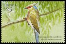 Cl: Blue-naped Mousebird (Urocolius macrourus)(Out of range)  new (2001)  [2/10]