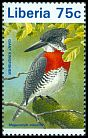 Cl: Giant Kingfisher (Megaceryle maximus) new (1996)