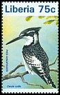 Cl: Pied Kingfisher (Ceryle rudis) new (1996)
