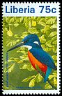 Cl: Shining-blue Kingfisher (Alcedo quadribrachys) new (1996)