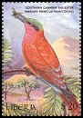 Cl: Southern Carmine Bee-eater (Merops nubicoides)(Out of range)  new (2000)