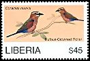 Cl: Rufous-crowned Roller (Coracias naevia)(Repeat for this country)  new (2008)  [4/48]