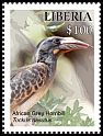 Cl: African Grey Hornbill (Tockus nasutus)(I do not have this stamp)  new (2016)