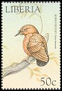 Cl: Rufous Piculet (Sasia abnormis)(Out of range and no other stamp)  new (1999)
