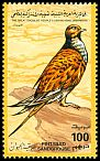 Cl: Pin-tailed Sandgrouse (Pterocles alchata) SG 2277 (1995) 35