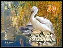 Cl: Dalmatian Pelican (Pelecanus crispus)(Repeat for this country)  new (2016)