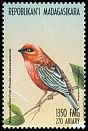 Cl: Red Fody (Foudia madagascariensis)(Endemic or near-endemic)  new (1999)