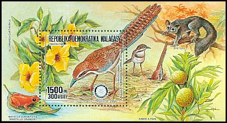 Cl: Long-tailed Ground-Roller (Uratelornis chimaera)(Endemic or near-endemic)  SG 676 (1988)