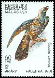 Cl: Common Cuckoo (Cuculus canorus)(Out of range) (not catalogued)  (1991)