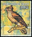 Cl: Madagascar Serpent-Eagle (Eutriorchis astur) new (1991)