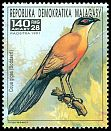 Cl: Giant Coua (Coua gigas)(Endemic or near-endemic)  new (1991)