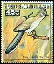 Cl: Verreaux's Coua (Coua verreauxi) new (1991)