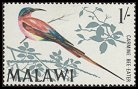 Cl: Southern Carmine Bee-eater (Merops nubicoides) SG 316 (1968) 100