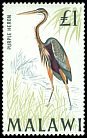 Cl: Purple Heron (Ardea purpurea) SG 322 (1968) 800