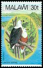 Cl: African Fish-Eagle (Haliaeetus vocifer) SG 674 (1983) 160