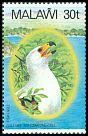 Cl: African Fish-Eagle (Haliaeetus vocifer)(Repeat for this country)  SG 675 (1983) 140