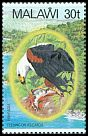 Cl: African Fish-Eagle (Haliaeetus vocifer)(Repeat for this country)  SG 678 (1983) 140