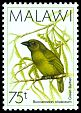 Cl: Green Barbet (Stactolaema olivacea) SG 800 (1988) 10
