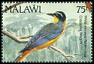 Cl: White-browed Robin-Chat (Cossypha heuglini)(Repeat for this country)  SG 884 (1992) 90