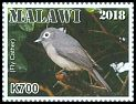 Cl: African Yellow White-eye (Zosterops senegalensis)(Repeat for this country)  new (2018)