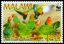 Cl: Lilian's Lovebird (Agapornis lilianae)(Endemic or near-endemic)  SG 1041 (2009) 200