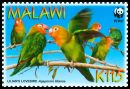 Cl: Lilian's Lovebird (Agapornis lilianae)(Endemic or near-endemic)  SG 1042 (2009) 200