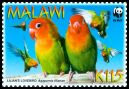Cl: Lilian's Lovebird (Agapornis lilianae)(Endemic or near-endemic)  SG 1044 (2009) 200