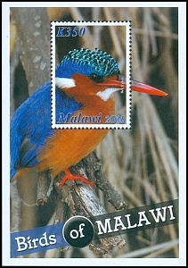 Cl: Malachite Kingfisher (Alcedo cristata)(Repeat for this country)  SG 1135 (2016)