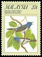 Cl: Black-naped Monarch (Hypothymis azurea) <<Sambar Uban Hitam>>  SG 394 (1988) 175