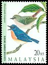 Cl: Pygmy Blue-Flycatcher (Muscicapella hodgsoni) SG 631 (1997) 45