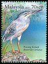Cl: Striated Heron (Butorides striata) <<Pucung keladi>>  SG 2090 (2015) 140 [10/1]