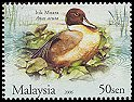 Cl: Northern Pintail (Anas acuta) <<Itik Muara>>  SG 1318 (2006) 100 [5/14]