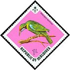 Cl: Golden-fronted Leafbird (Chloropsis aurifrons)(Out of range)  SG 458 (1973) 10