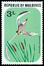 Cl: White-tailed Tropicbird (Phaethon lepturus)(Repeat for this country)  SG 704 (1977) 20