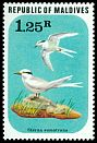 Cl: Black-naped Tern (Sterna sumatrana) SG 709 (1977) 250