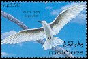 Cl: White Tern (Gygis alba)(Repeat for this country)  SG 1838 (1993) 65